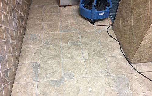 carpet cleaning in Arlington tx