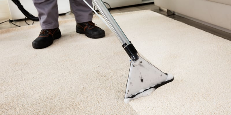Some Q&A about steam cleaning your carpets