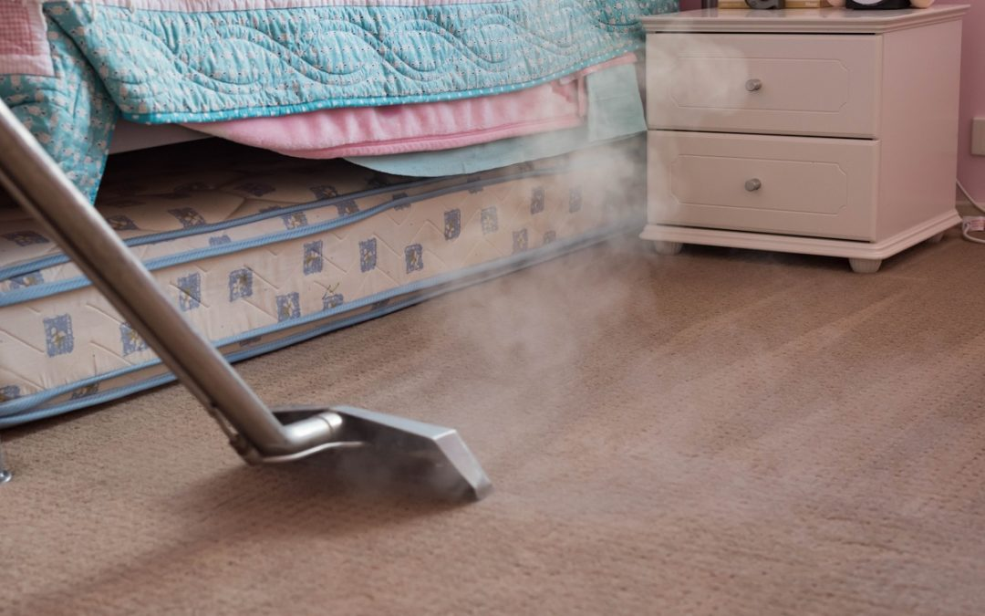 The main benefits of using an eco-friendly company carpet cleaner