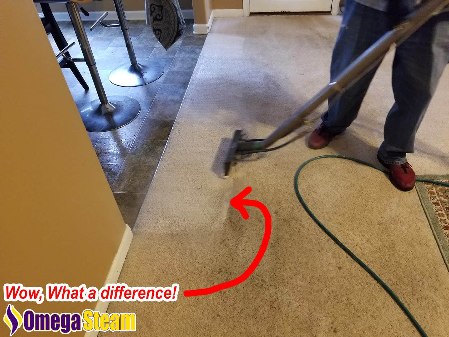 Carpet Cleaners inMansfield TX