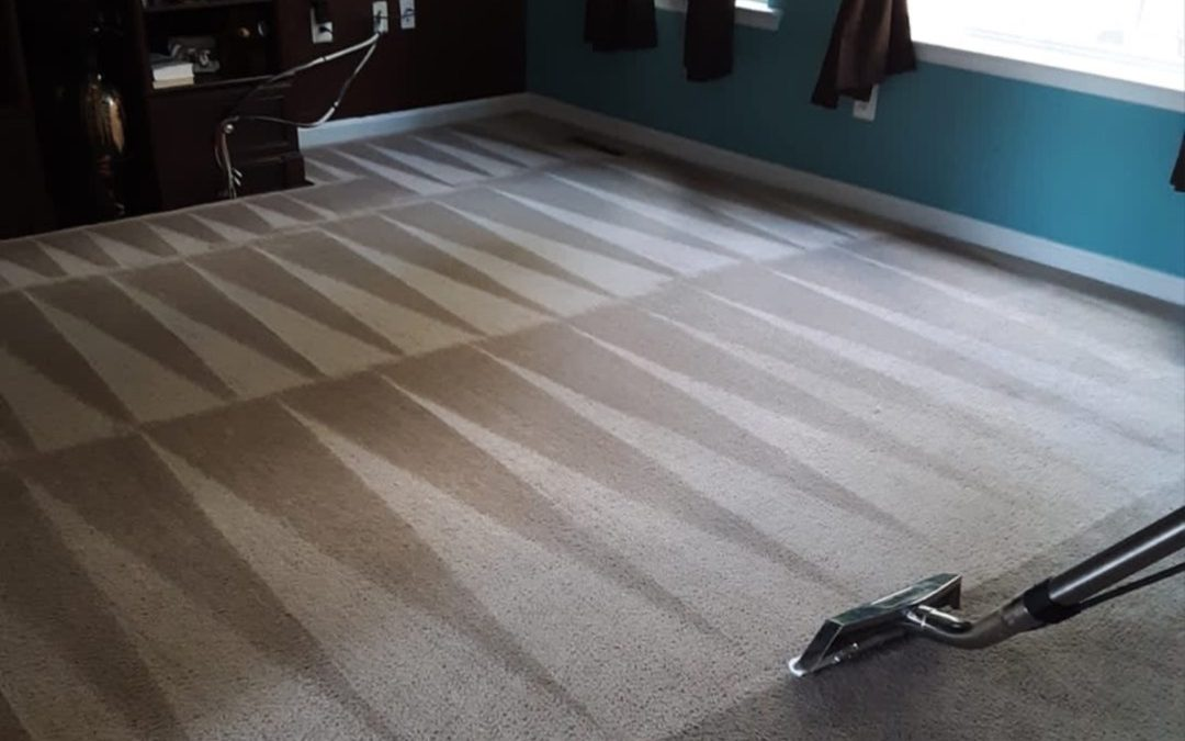 Omega Steam's tips for Keeping Your Carpet Looking Great