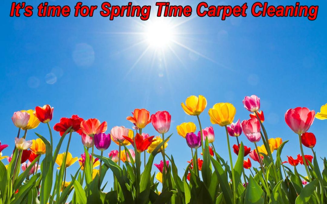 Add carpet cleaning services in Arlington to your spring cleaning list